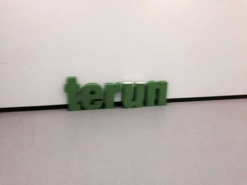 """Con la scritta """"Terun"""" la Regione Lombardia accoglie le imprenditrici pugliesi"""