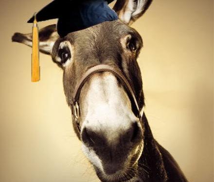 Voti favoriscono studenti meridionali? La bufala smascherata da una ricerca ROARS